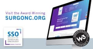 W3 Silver award for SSO website